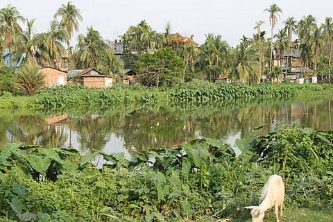 The lovely village of Sualkuchi