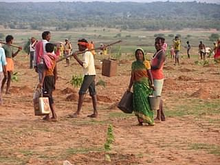 The social venture has provided employment to thousands of farmers and curbed migration to cities