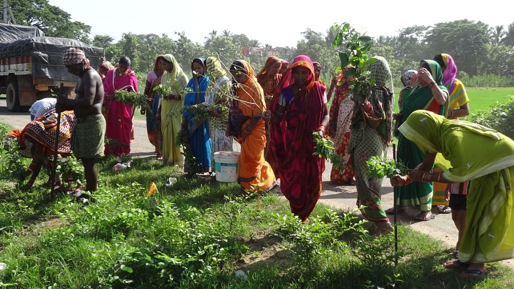 Meet the 'Whistle Bahinis', a group of 30 women from Jagannath Prasad block in Odisha's Ganjam district, who decided to go in for a full clean up act in their villages. (Rakhi Ghosh\WFS)