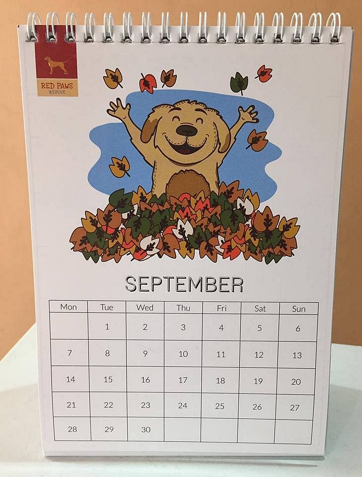 A doggie calendar sold at the spa to raise money for Red Paws Rescue