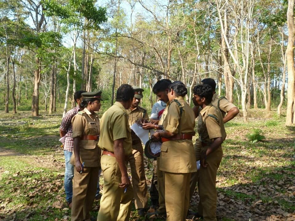 Forest guards keep a track of location of the elephants and notify the Shola Trust team.