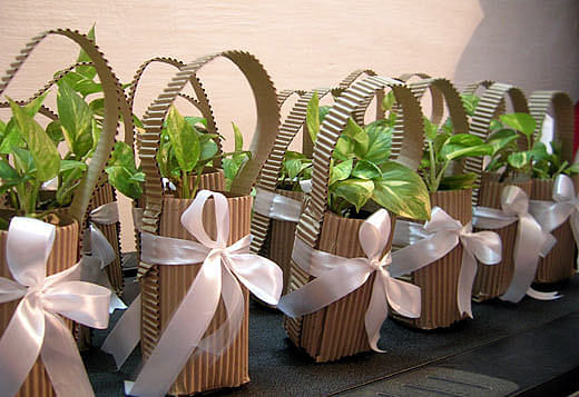 5_green-party-favors-and-gifting-ideas-to-present-plants-and-flowers-for-any-special-occasion_beautiful-gifts-for-little-gardeners