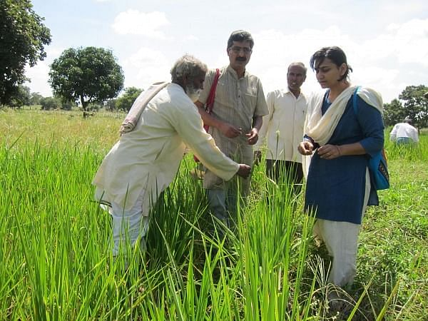4-one-of-the-sahaja-associated-farmer-showing-his-rice-conservation-work