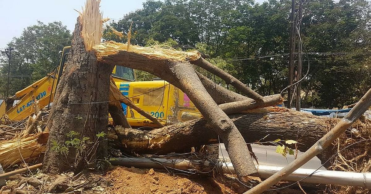 hyderabad-citizens-act-to-save-trees-in-2-days